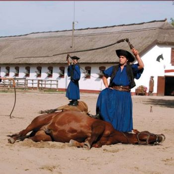 Hungarian Puszta Tour with Horse Show